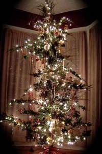 cheap-christmas-tree-3