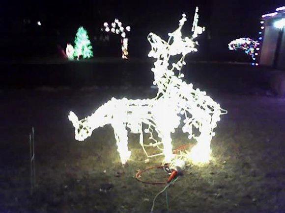 humping deer - Deer Christmas Lights