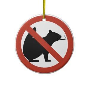 no_smoking_squirrels_allowed_highway_sign_ornament-r5240042eba1145eaa03b13953b7af88b_x7s2y_8byvr_512