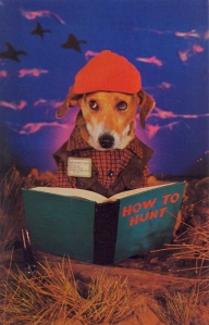 You may have thought hunting is a skill which should come naturally to dogs. Still, it doesn't answer how this dog learned to read.