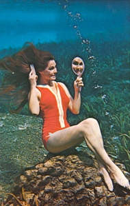 I'm sure personal grooming is perfectly easy underwater. Actually getting your hair untangled after swimming is a nightmare. Still, the real world isn't like The Little Mermaid or Spongebob Squarepants for crying out loud.