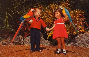 Either the parrots will attack the children or the kids will learn some naughty new words from them.