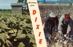 Of course, the cotton picking by blacks reminds me of one of the great injustices in American history. Seriously, it's offensive. As for the leafy green plants, they're the least healthy ones on the planet.