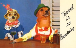 Everyone knows you shouldn't give your dog alcoholic beverages. This is so wrong.