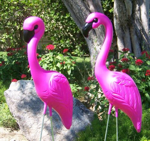 1281225292_111278340_1-Pictures-of--Pink-Flamingo-Lawn-Ornaments-1281225292