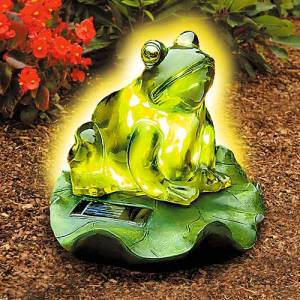 Now if I saw a real frog glowing in the dark in my yard, I'd freak out like you wouldn't believe. Seriously frogs don't glow in the dark.