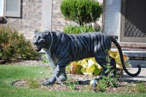 I just hope that whoever owns this doesn't have neighbors in PETA, ASPCA or the Humane Society. In fact, let's hope that this person isn't living anywhere near anyone active in animal rights because a tiger chained at the neck has some rather unfortunate implications.