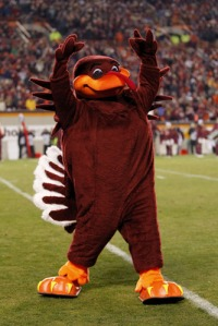 "Let's face it, Virginia Tech, Hokie Bird is a turkey which aren't known to be fearsome creatures (at least the domestic ""other white meat"" variety). Still, you have to admit that Hokie Bird does live up to his name. I mean a turkey mascot is kind of hokey isn't it?"