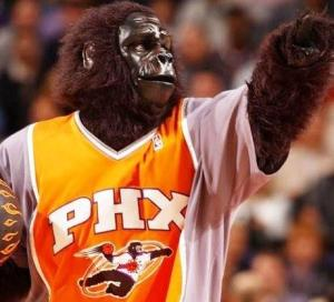 Only the Phoenix Suns could think of a mascot by dressing a guy in a gorilla suit and a Phoenix Suns jersey. However, our culture has been well accustomed to not taking people in gorilla suits seriously though gorillas are animals nobody would want to mess with.