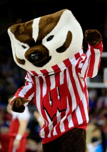 Badgers can be pretty tough and vicious animals that could spread rabies as well as eat your garbage. This guy seems too lame to inflict any damage whatsoever. Also, he has an enormous head which is kind of freaky.