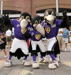 """I don't know about you, but I think having three Baltimore Ravens mascots modeled after the racist crows from Dumbo named Edgar, Allan, and Poe would sort of send the noted author of """"The Raven"""" turning in his grave. Sure they shall receive love from their fans, nevermore."""