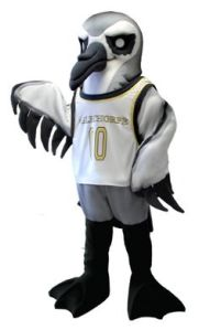 Of course, what would make a better college mascot than a small bird known to into hurricanes and tornadoes? Then again, perhaps it has rivals named the Tornadoes or Hurricanes. Yet, willingness to fly into a destructive storm doesn't always make the bird seem badass. This mascot seems rather pathetic.