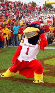 Now seriously, why do cardinal birds make us think of tornadoes? Oh, yeah, I remember they don't. Of course, Cy was chosen for the mascot since the school thought that Walter the Wrecked Trailer epically failed to capture the ISU spirit.