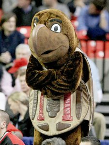 Now I would expect the University of Maryland to have an unconventional mascot but I don't think it should feature a slow old reptile that could live for nearly 100 years. Then again, they probably went for the turtle after realizing that a crab mascot costume would've been too complicated. Seriously, why couldn't Maryland simply go with a crab?