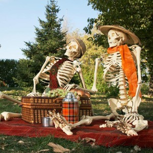 Just a nice quiet afternoon open air picnic with Mr. and Mrs. Bones. I'm sure the neighbors won't complain though they'd wonder where you got the skeletons from.