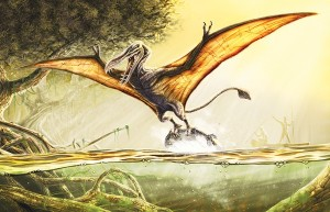 Now the Kongamato may be a creature you may not have heard of but it's sort of a large Pterodactyl on steroids that is said to reside in Central Africa. Still, if you see it, don't ever dare to look it in the eye since it will be sent into a flying rage and kill you.