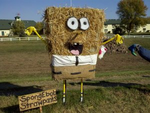 The reason he's called Strawbob is because he's made out of straw not sponge. Of course, I don't need to tell you where this takes off from.