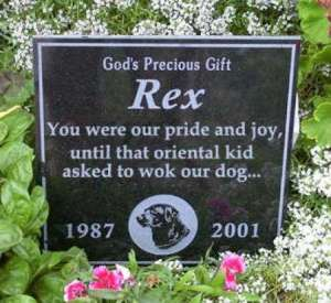 Then again, Rex's life dates indicate that he was 14 years old. Let's just say, if that Asian kid didn't ask to wok him, then it's very possible that the vet would've put him to sleep.