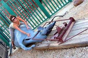 Seriously, Russia, this is one of the most fucked up pieces of playground equipment I've ever seen. I mean why would anyone think that a dead mouse in a mousetrap is a good idea for a kids' playground piece. Giant rats are terrifying enough but seeing them dead in a giant mouse trap, well, that's sick.