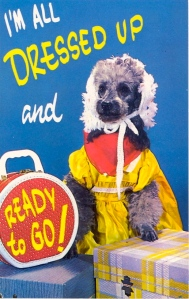 I'm sure this dog is now shirking in embarrassment for having to pose for this postcard in this idiotic outfit. I mean, people won't even dress their kids up this way, let alone a dog. Also, dogs have fur so they don't need clothes.