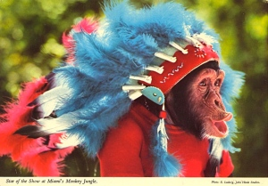 Let's just hope this little ape isn't a mascot for some college sports team with an Indian mascot. Still, at least it's not in African dress, which would've been more offensive.