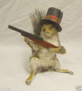 Now this is another Victorian taxidermy piece. Don't get me wrong, there are species of squirrels that are omnivores. Yet, the nut eating gray squirrel is the conventional stereotype.