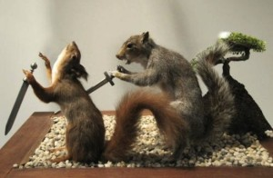 Then again, dueling is kind of a stupid idea, especially to the death. Yet, we have a sport derived from it called fencing. Still, that gray squirrel is a bastard.