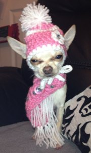 Man, Tinkerbell doesn't look very happy in her new crocheted bundle up set. In fact, she looks really pissed.