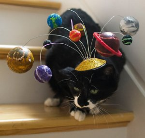 I'm sure this cat seems board of its mind as well as embarrassed to have its picture taken with this solar system hat on its head. Nice try, Sheldon Cooper.