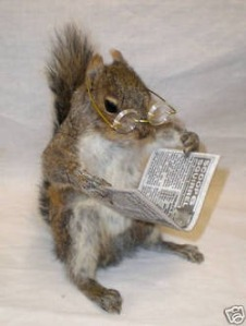 Of course, this squirrel is reading about the acorn trade in today's Oak Street Journal. Nevertheless, let's home he's not a frequent watcher of Fox News which is staffed by actual foxes in his case.