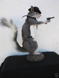 No, I'm sure he'll soon bite off more acorns than he could chew. Still, predators should watch this black hat wearing gray squirrel.