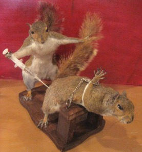 Does the squirrel need restrained because of its fear of needles? Or does this have something to do with some kinky BDSM? Maybe I don't want to know.