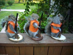 You might want to watch out for squirrels in orange vests this fall. Seriously, watch out for them.