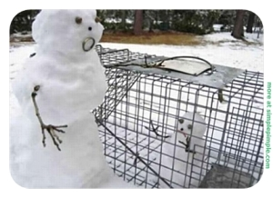 Now this is either hilarious, demented, or both. Still, I have to feel bad for the little snow kid in the cage and its parent in a state of distress.