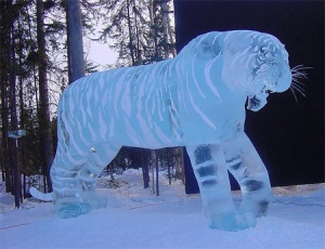 There's something magical about this lovely ice sculpture tiger in the snow. Of course, tigers are very majestic and beautiful creatures nevertheless.