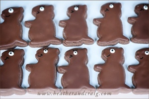 Now these are just so cute. Wonder where they could get those groundhog cookie cutters. Still, would be a shame seeing them get run over by a car, wouldn't it?