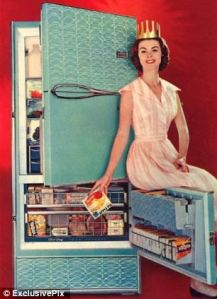 Now I'm fine with turquoise but this fridge seems more appropriate for the kitchen of some tacky trailer park than in most households. Yet, I'm sure this woman isn't the Snow Queen from Frozen.