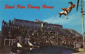 Oh, my God, I think I just made PETA want to burn my house down for posting this. Perhaps the Humane Society may want to join in. Still, what sadist could think of horses jumping off the high dive? This is just fucking insane! Also, illegal in most states. By the way, this postcard is from Atlantic City, New Jersey where Boardwalk Empire takes place. Man, seems like Nucky's booze is really getting to them.
