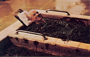 Okay, that's just a guy getting mud bath at a spa. Still, you'd wonder if this was just some crazed garden store of death seeing him like that.
