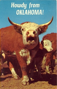 """This cow doesn't look like it's saying, """"Howdy!"""" Rather I think it's trying to say, """"They're going to kill us all and put us on buns at the local burger joint! Get out while you still can!"""""""