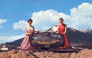"""Sorry, but whenever I see a big fish mounted like that on a plaque, that's all I think about. I could just hear that fish sing, """"Take me to the river, Put me in the water...."""""""