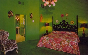 Basically the idea of this room's design came from the person who really liked the color green and so painted all the walls that way. The decorative ideas came from his 6 year old daughter. God, that's tacky.
