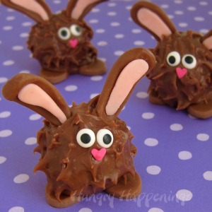 However, they seem to be just little chocolate fur balls with rabbit ears and feet. But that's beside the point so use your imagination.
