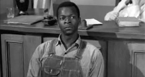 Though Brock Peters is best known for playing Tom Robinson from To Kill a Mockingbird, Star Trek fans are quick to point out he was Admiral Cartwright from The Voyage Home and Commander Sisko's dad from Deep Space Nine.
