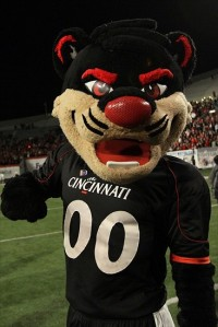 Now my college mascot was a bearcat but basically looked like a cougar. However, this is actually supposed to resemble a bearcat which is an animal from Southeast Asia that is neither bear nor cat. Not to mention, isn't even intimidating. Seriously, Cinci should just pick something that lives in Ohio as their mascot like a coyote.