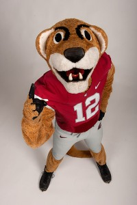While I can agree he's a cougar, I'm not sure if I'd call him butch. Seriously, he seems like he has issues with his masculinity or something. Also, quite dopey and not very intimidating.