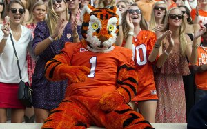 Seems like Clemson doesn't administer drug tests for their mascot candidates. I mean the Tiger certainly has eyes of someone who's totally high on brown acid or crystal meth.