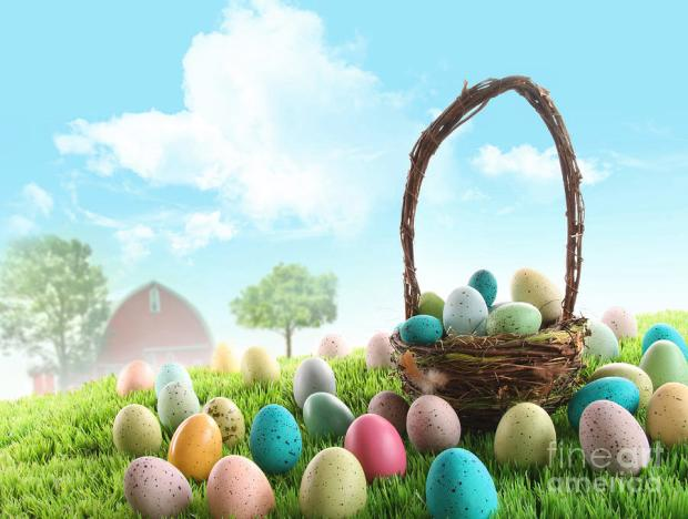colorful-easter-eggs-in-field-of-grass-sandra-cunningham