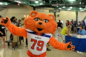 Sammy had always aspired to be the mascot of Doritos since he had the orange fur nailed flat. But after being rejected by Frito Lay for drug use, decided to be a mascot for SHSU instead.