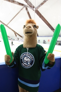 Now a camel mascot is lame enough. But this one seems to have a Loch Ness elongated neck really makes it seem like a terrifying monster. Also the green balloons don't help his case.